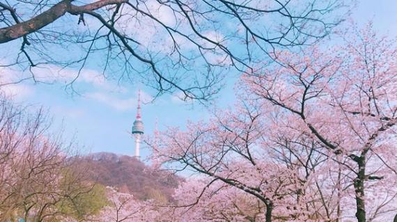 Tour HÀ NỘI - SEOUL - NAMI NAMSAN TOWER 5 NGÀY 4 ĐÊM